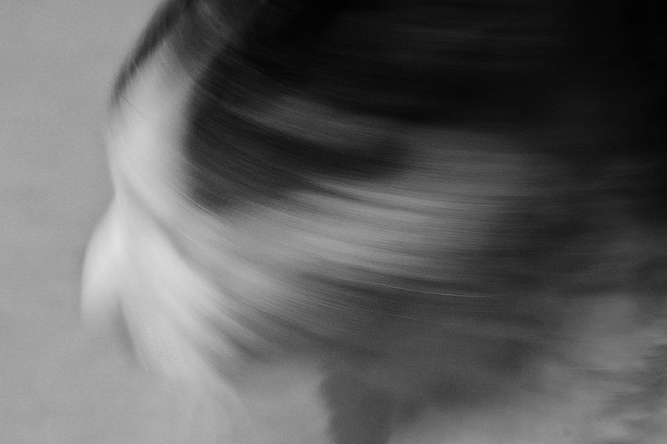 cat-mono.jpg