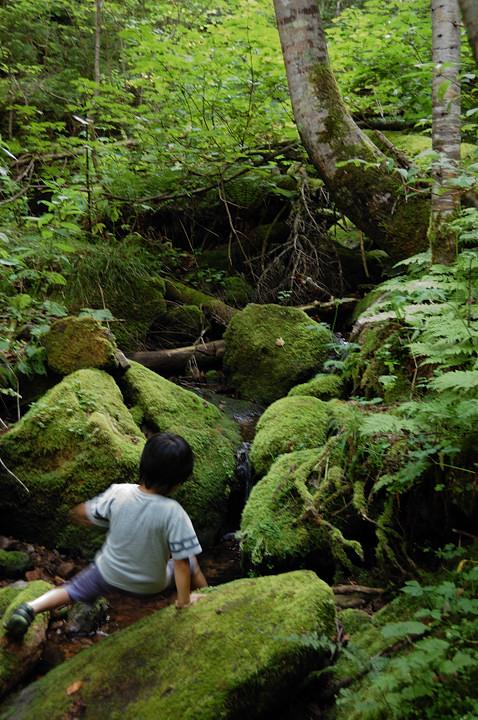 keiyuu-children-green-s.jpg
