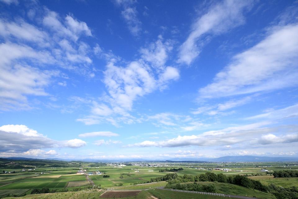 koukaku-summer-s.jpg