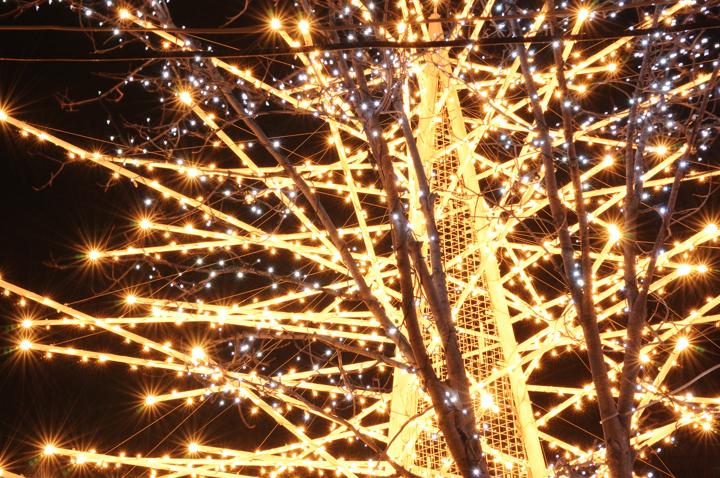 light-illumi-s.jpg