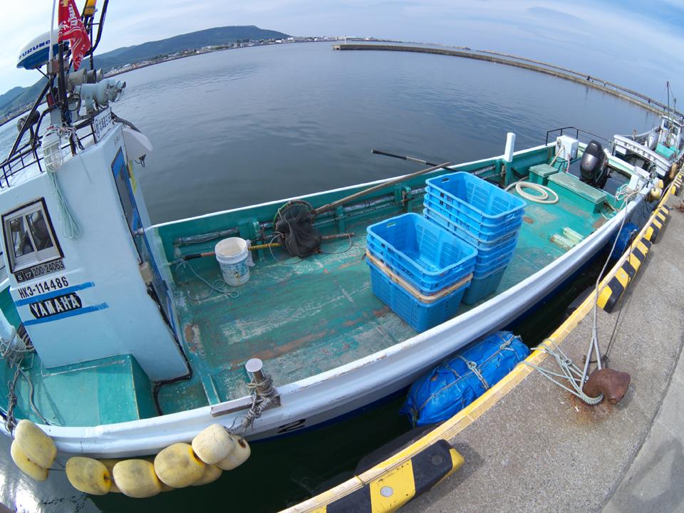 ship-minato-yamaha-s.jpg