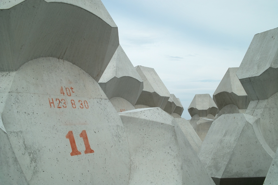 tetra-no11-s.jpg
