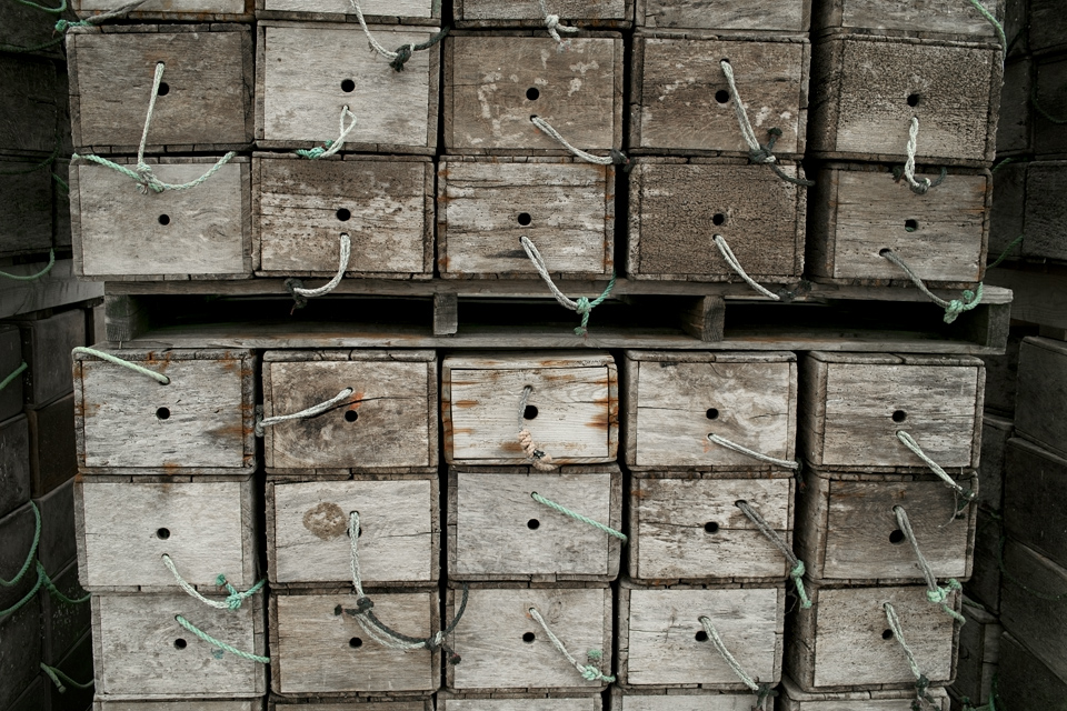 wood-box-sea-s.jpg