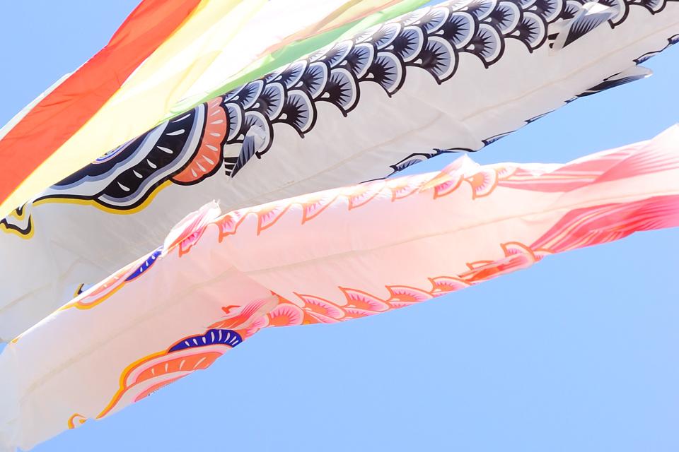 koinobori-skyblue-s.jpg