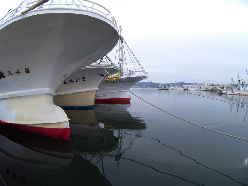 ship-3-2012-s.jpg